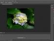 Trải nghiệm miễn phí Photoshop CS6 vừa xuất hiện