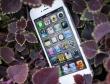 Những smartphone mới đỉnh nhất 2012