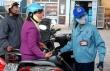 Chậm giảm giá xăng dầu, lỗi tại điều hành?