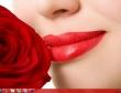 Những đóa hoa trên desktop mừng ngày 8/3