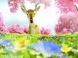 Video quảng cáo Where Spring